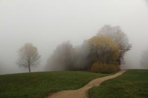Wandern rund um Magglingen ist auch im Herbstnebel schön