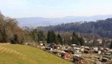 Richtung Leimbach und Stadt Zürich