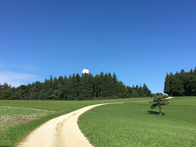 Schon von weitem erblickt man den Hagenturm über den Baumwipfeln