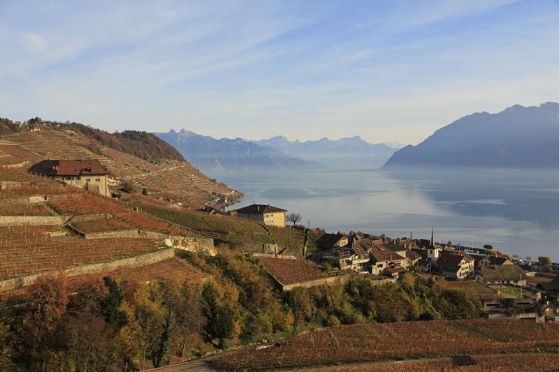 Unterwegs in den Rebbergen des Lavaux am Genfersee