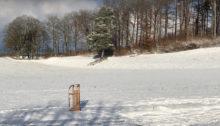 Etwas Schnee, ein Hang – und schon gehts los mit dem Schlitteln