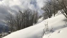 Schnee, Schnee und Schnee