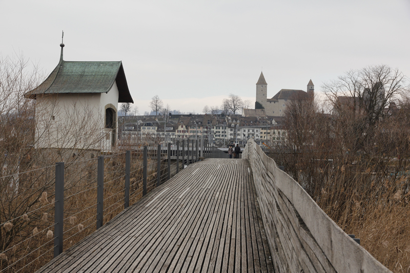Blick auf Rapperswil