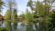 Der Stadtweiher von Bülach