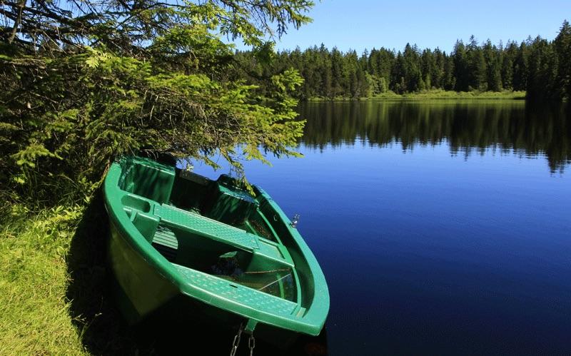 Wer wohl das Privileg besitzt, mit dem Ruderboot auf dem See unterwegs zu sein?
